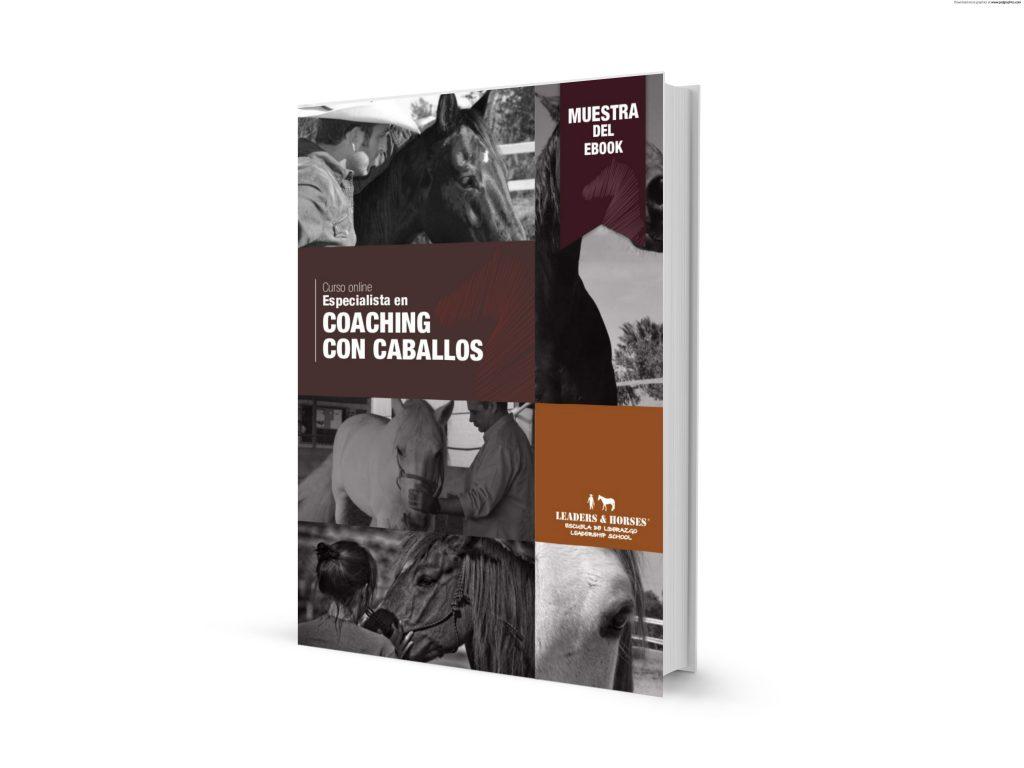 curso-online-experto-en-coaching-con-caballos