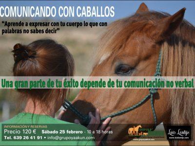 Cartel Comunicando con caballos